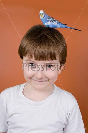 Портрет улыбающегося мальчика с попугаем на голове на коричневом фоне