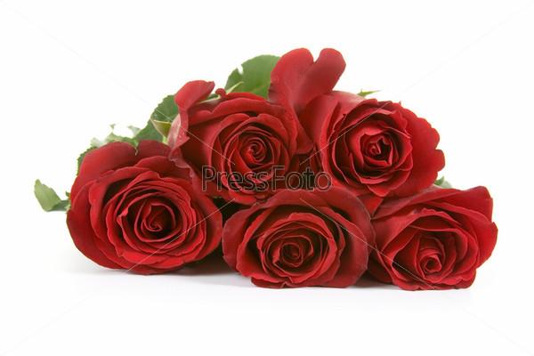 Фотография на тему Букет из красных роз, изолированный на белом фоне