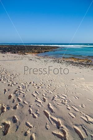 Экзотический пляж со следами на песке. Лансароте, Канарские острова, Испания