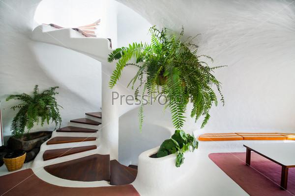 Фотография на тему Белая деревянная винтовая лестница с цветами в современном интерьере