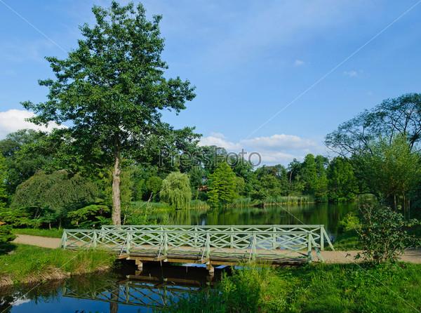Романтический зеленый деревянный мостик в парке Сан-суси. Берлин, Германия