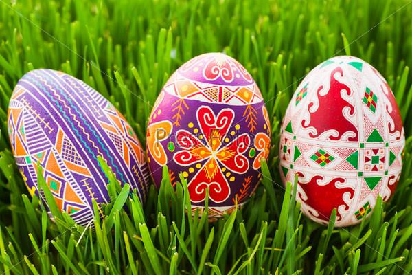 Фотография на тему Пасхальные яйца в зеленой траве
