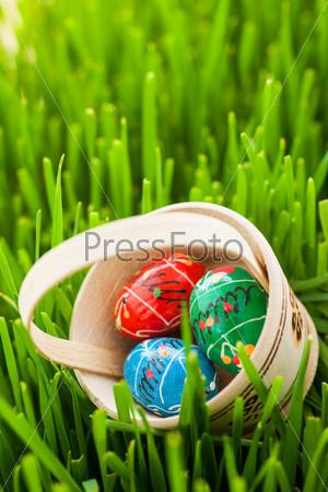 Пасхальные яйца в зеленой траве