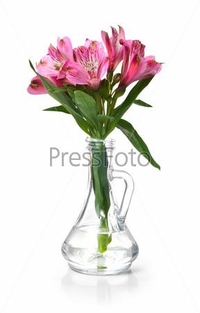 Фотография на тему Розовые лилии альстремерии в стеклянной вазе, изолированные на белом фоне