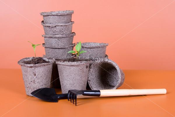 Торфяные горшки, саженцы и садовый инвентарь на коричневом фоне