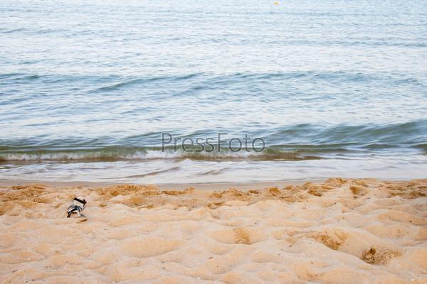 Морской пляж в летнее время