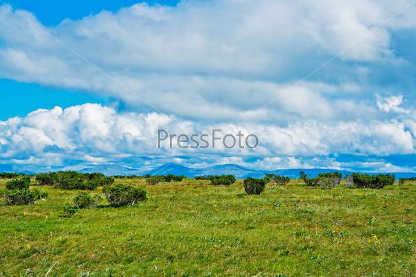 Фотография на тему Тундра на плато Кваркуш, Пермский край