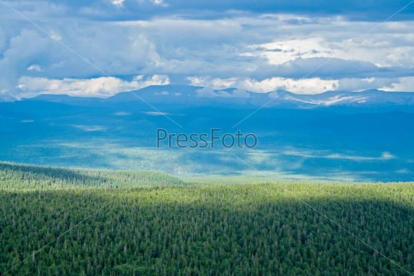Тайга на плато Кваркуш, Пермский край