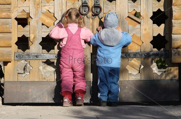 Дети смотрят через деревянные ворота
