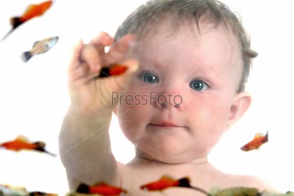 Фотография на тему Маленькая девочка играет с рыбками в аквариуме