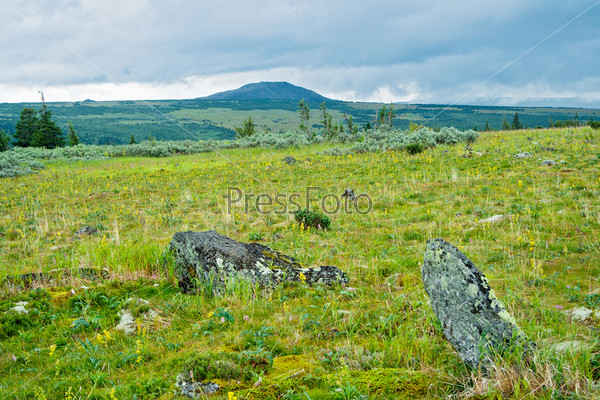 Фотография на тему Тундр, плато Кваркуш. Пермский край. Россия