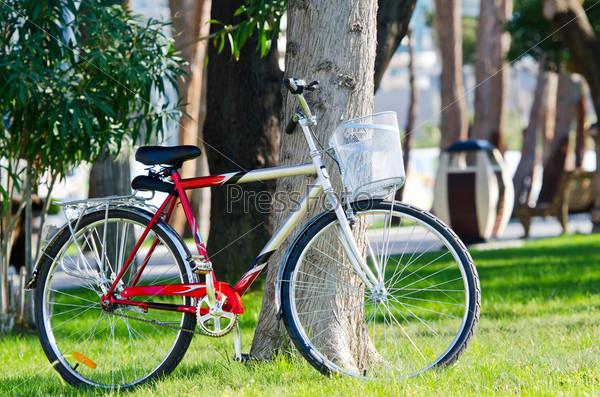 Велосипед в парке
