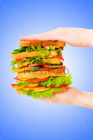 Гигантский сэндвич в руках на голубом фоне