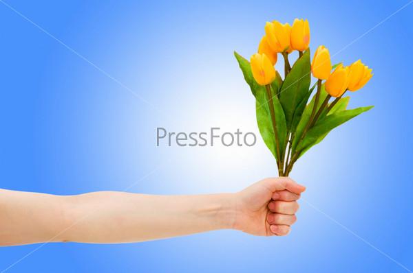 Рука с тюльпанами на градиентном фоне