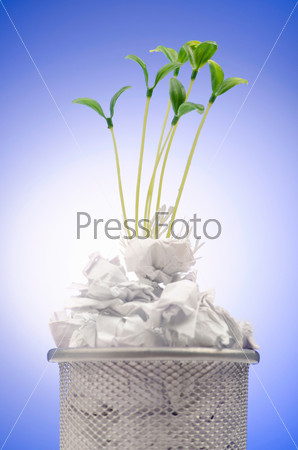 Зеленые саженцы, растущие из бумаги