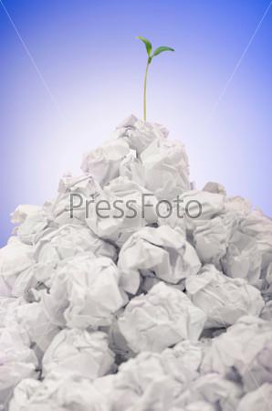 Зеленый саженец, растущий из бумаги