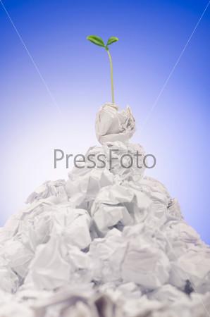 Зеленый сажеенц, растущий из бумаги