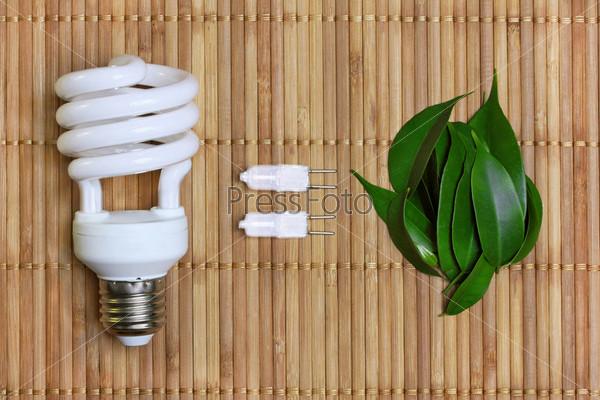 Энергосберегающая лампа и зеленые листья