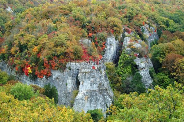 Красочная осень в горах Крыма, Украина