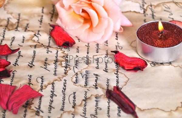 Фотография на тему Письмо и роза. Литература