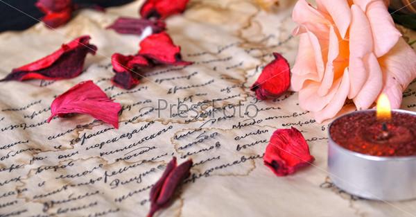 Письмо и роза. Литература