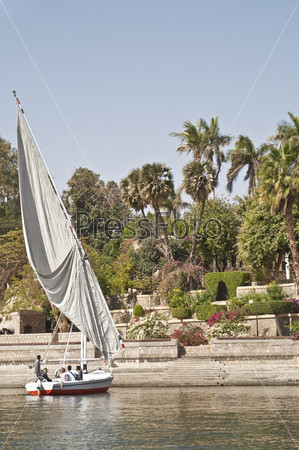 Фотография на тему Парусник на фоне Ботанического сада, Асуан, Египет