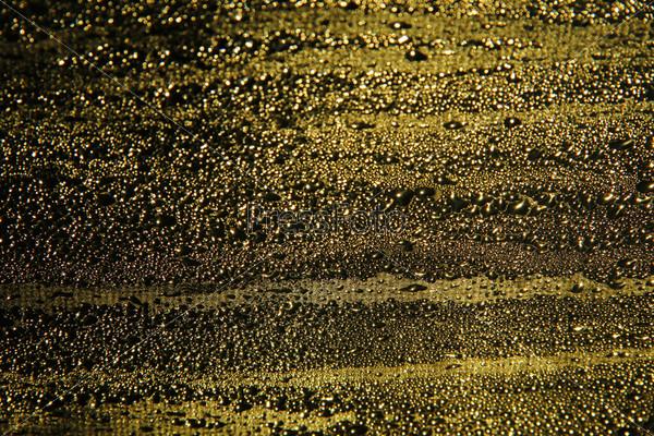 Капли на золотом фоне