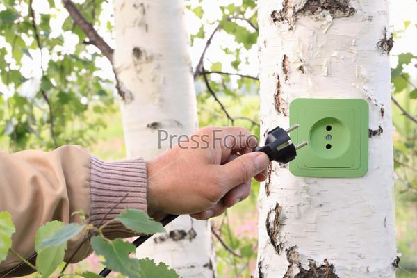 Экологическая концепция, символизирующая возобновляемые источники энергии, биоэнергии