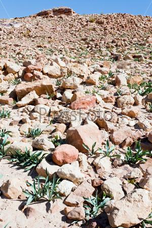 Каменные руины в пустынной долине города Петра, Иордания
