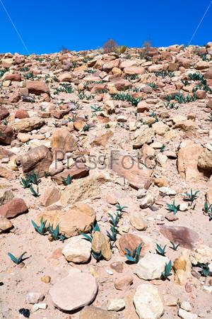 Каменные обломки в пустынной долине древнего города Петра, Иордания