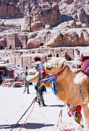 Лагерь бедуинов на Улице фасадов в древнем городе Петра, Иордания