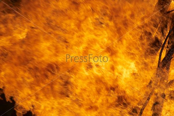 Фотография на тему Большой пожар в лесу