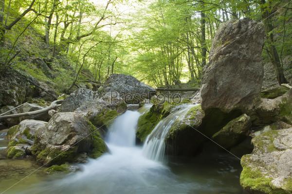 Небольшое живописное ущелье с горным потоком