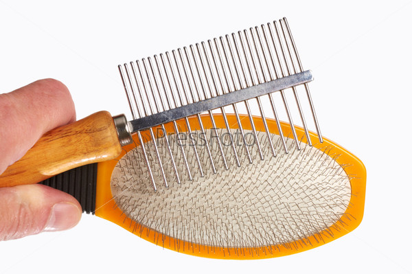 Hairbrushes for animals in a hand