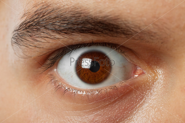 Коричневый цвет радужки глаза
