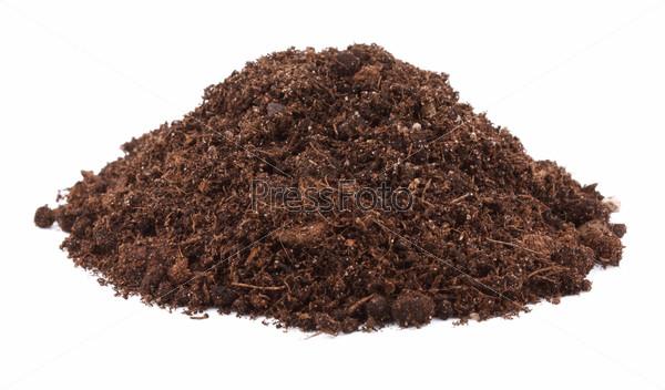 Pile of soil for plant