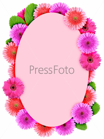 Floral ellipse frame with pink flowers