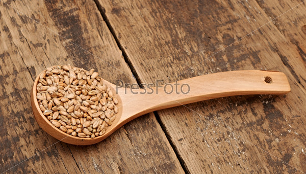 Wheat in wooden spoon  on wooden table