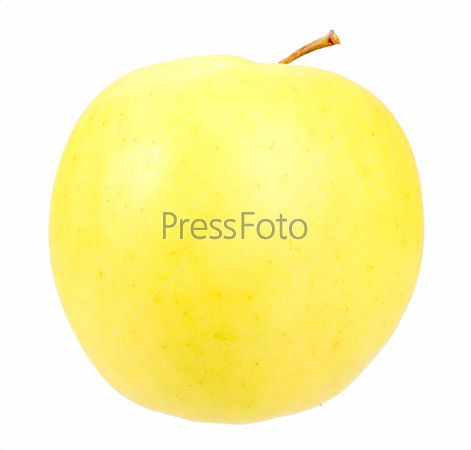 Big fresh yellow apple