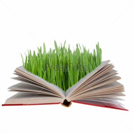 Open book with green grass