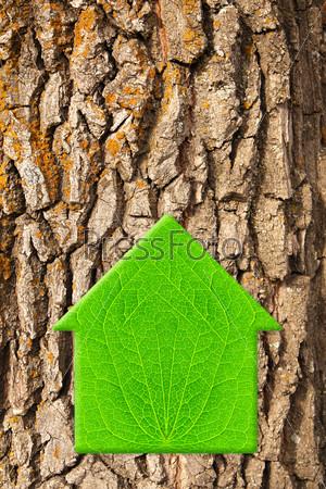 Домик из зеленого листа
