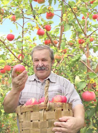 Мужчина с корзиной яблок