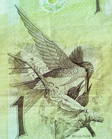 Фрагмент бразильской банкноты достоинством в 1 реал 1994 года с изображением колибри