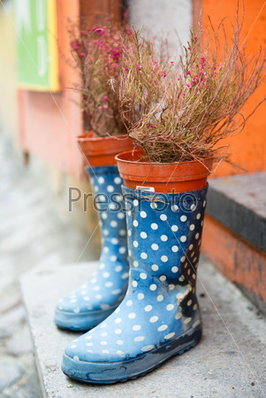 Rubber boots and flowerpot outdoors