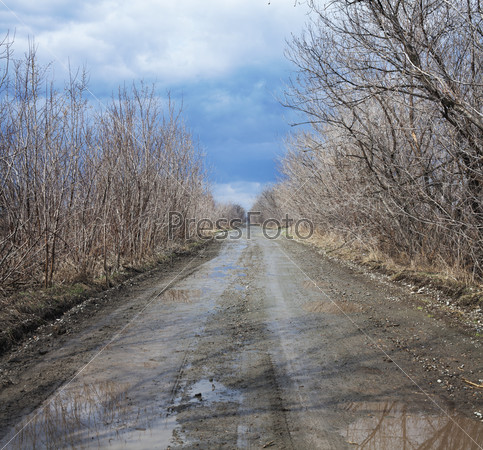 Puddles on a rural road