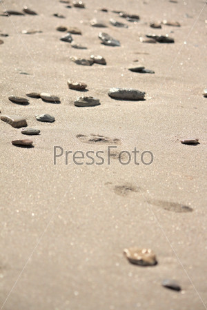 Footprints at the beach among the stones