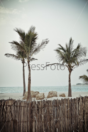 Tropical beach in retro style
