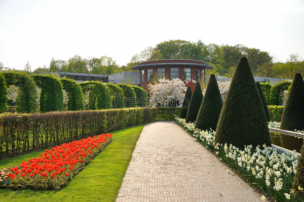 Garden with bushes, red and white flowers and trees in Keukenhof