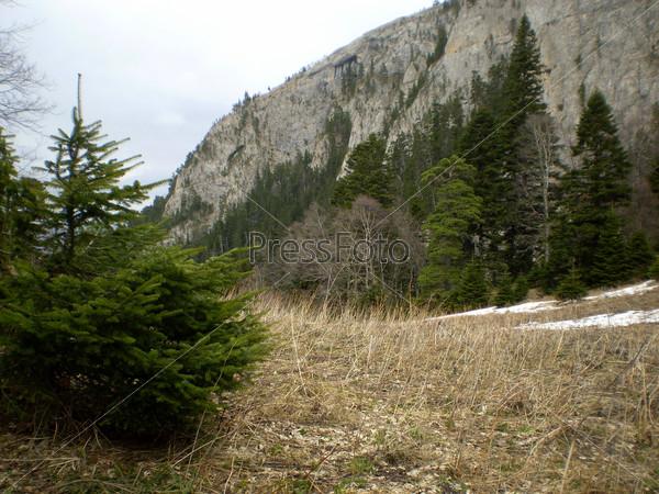 Горный пейзаж со скалами
