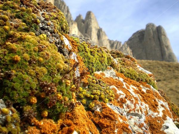 Красочные украшения в горах